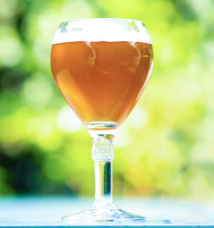 Вчені: секрет бельгійського пива - в гібридних дріжджах